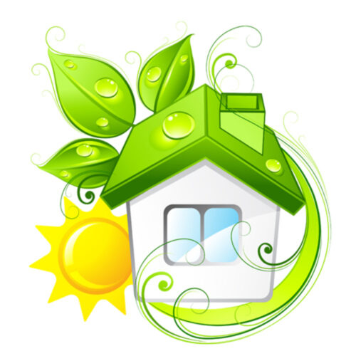 Sustainable Practices to Adopt in Your Home